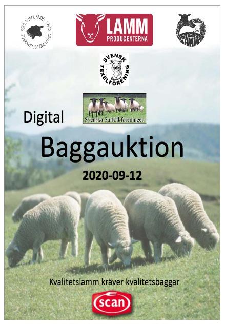 BaggauktionLkpng2020