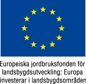 EU-flagga+Europeiska+jordbruksfonden+färg