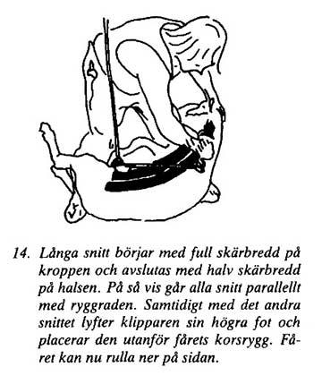 Klipp14