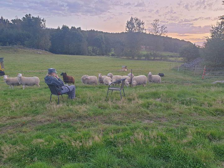 Sjunkamosse Gård Skåne