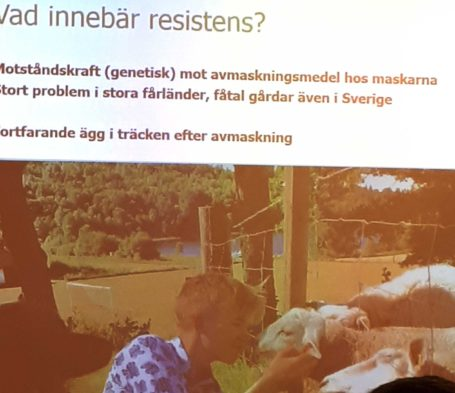 Uttern_resistens